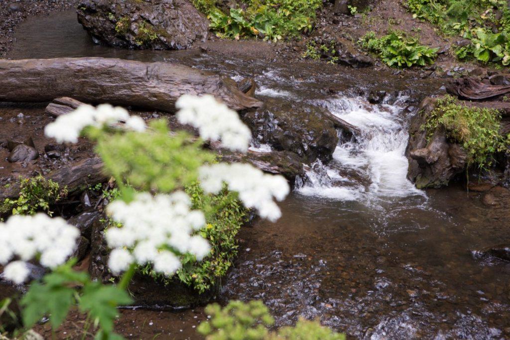 Latourell Falls